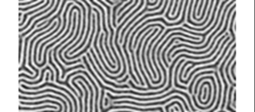 Lithography & Patterning   NFFA eu